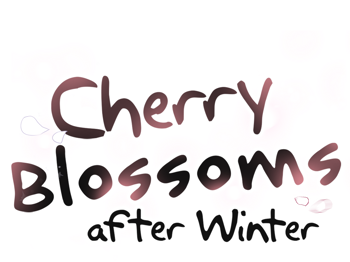 Cherry Blossoms After Winter